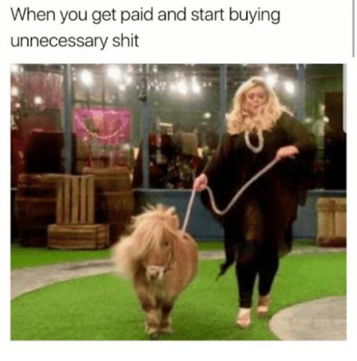 gemma collins memes pony